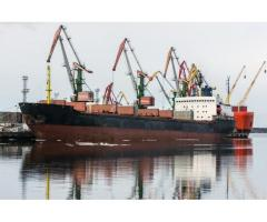 Arctic bulker - container ship DWT 23 000 t.