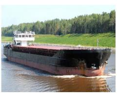 Bulk carrier 1982 DWT 2900